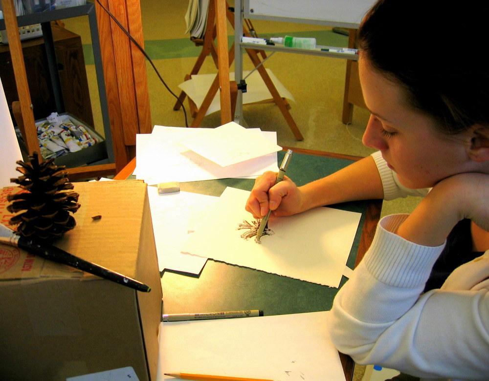 Drawing: Pinecone