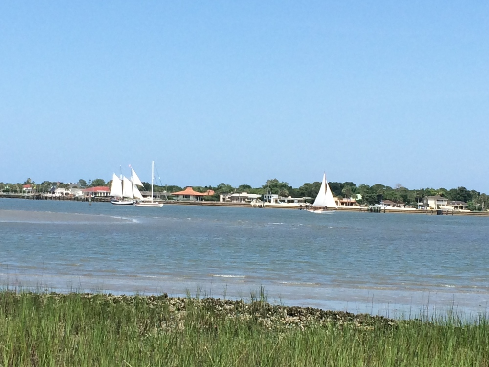 Watching the Schooner Freedom sail on Father's Day