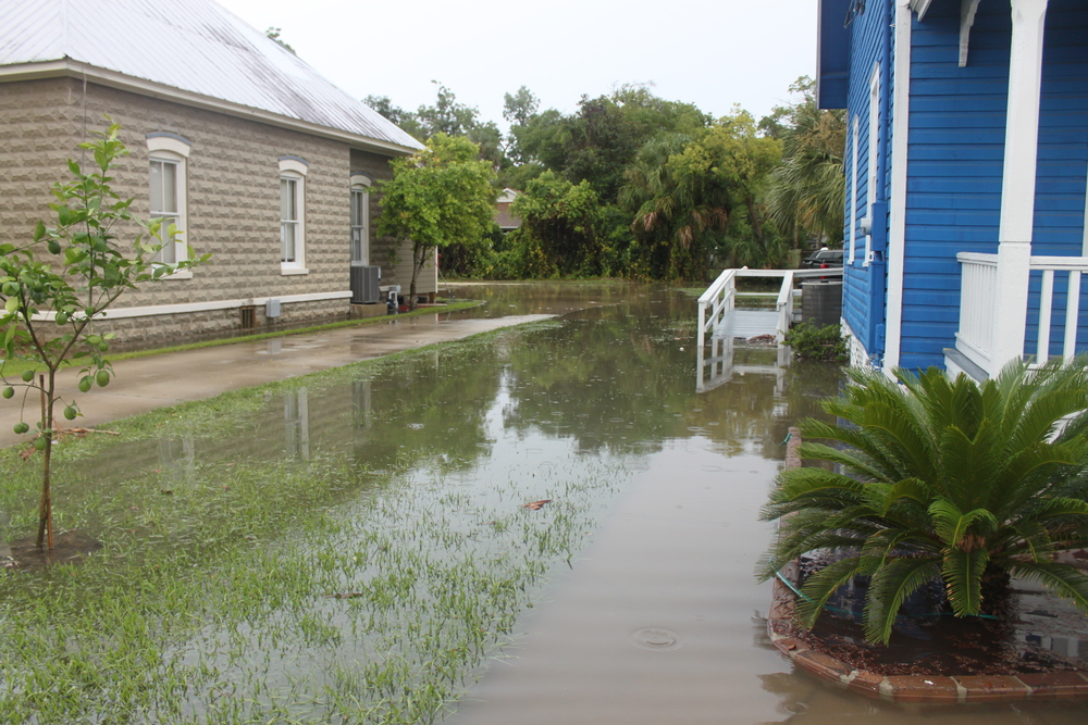 I was worried about some neighbors basement as I walked down the street.. but oh yea, it's Florida and there isn't worry about that flooding... hehe
