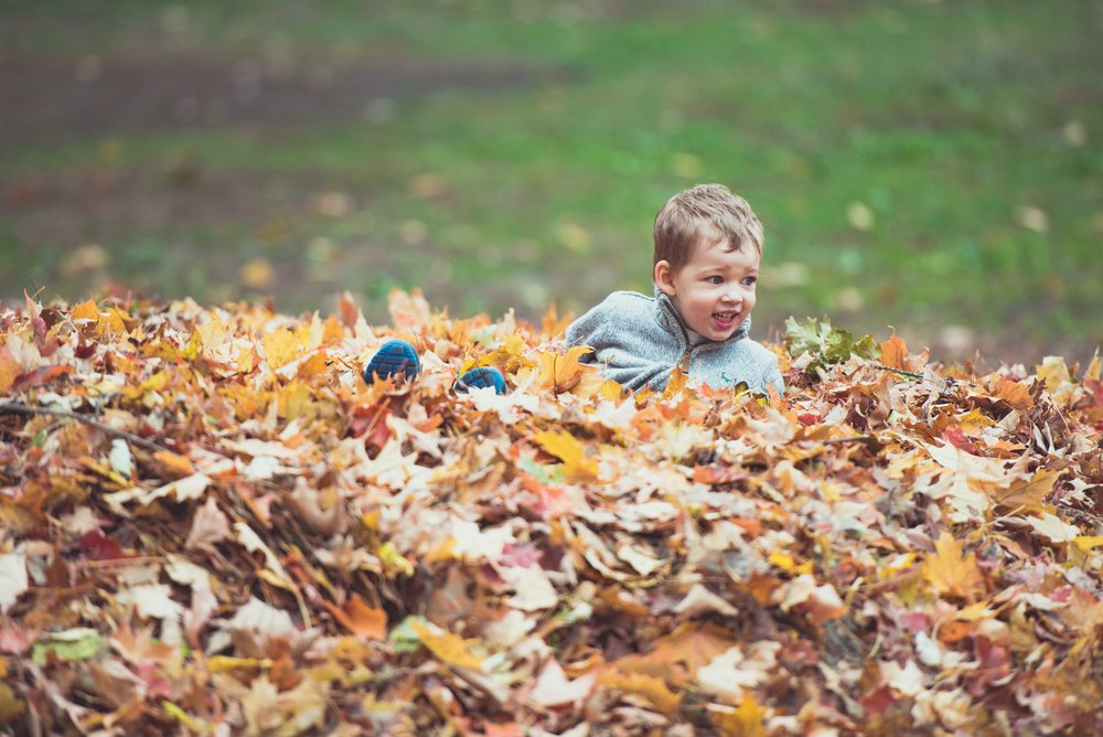 awesome child family portrait fun in autumn leaves .jpg