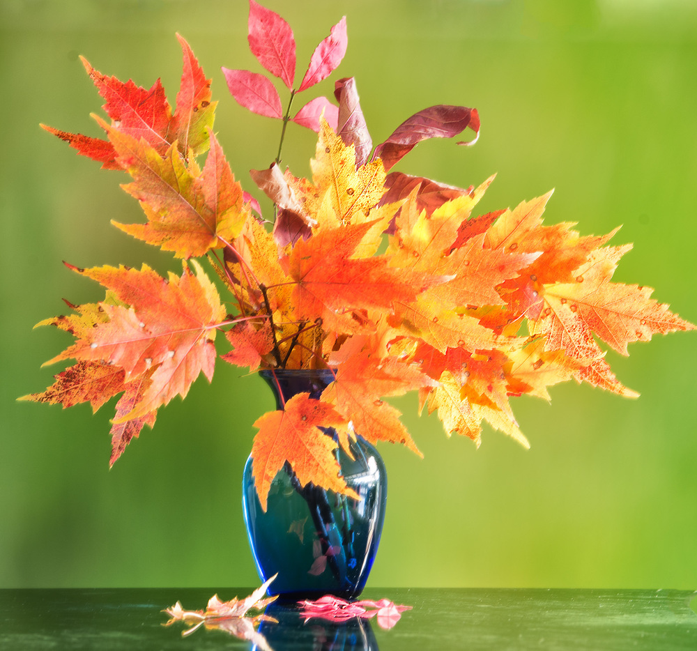 As we are all hurtling in to change of season, early fall changes in color are seen in this vase