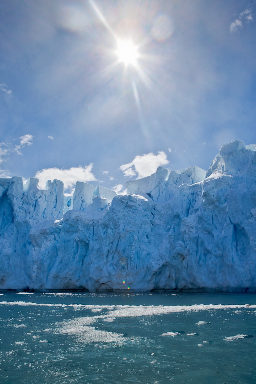 Icebergs in Midday sun
