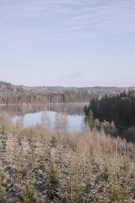 Sverige BOG00001.jpg