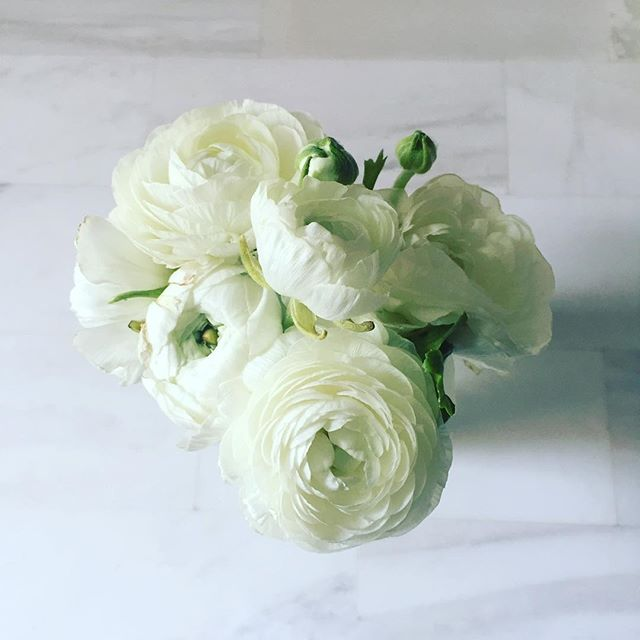 Ranuculus obsession these days 🌿💛#freshflowers #springishere