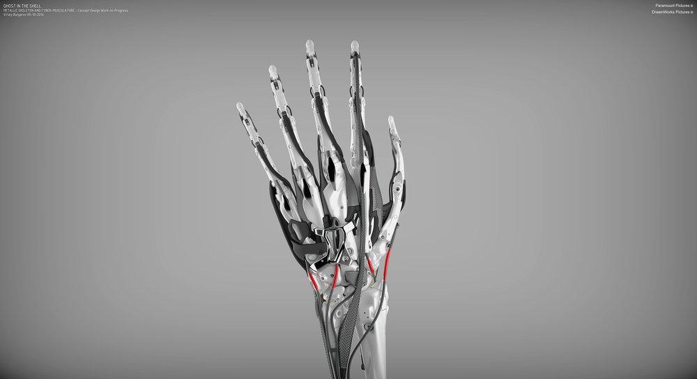 GITS_Hand_InternalStructure_09-10-2014_11.jpg