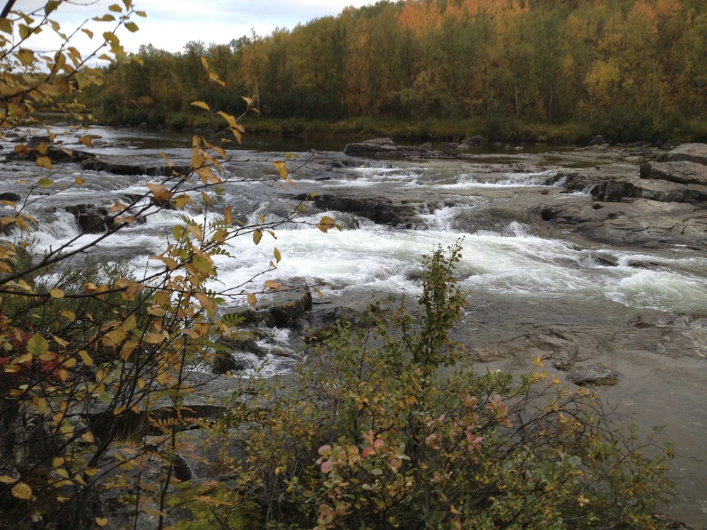 The Neiden river near Neiden, Norway