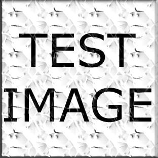 test (1).jpg