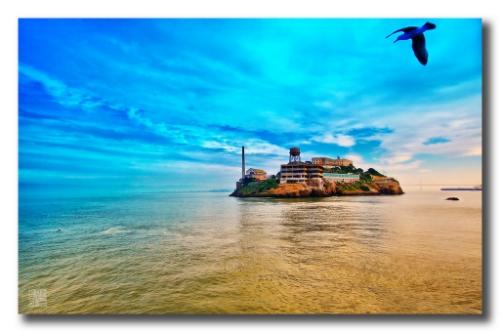 Alcatraz Island. Type I diabetes is caused by autoimmune destruction of Islet (Island) cells of the pancreas
