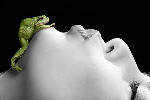 fairy,tale,black,and,white,face,frog,frog,prince,kiss-a67ea838ce62046e5a8aa957deb865b1_h.jpg