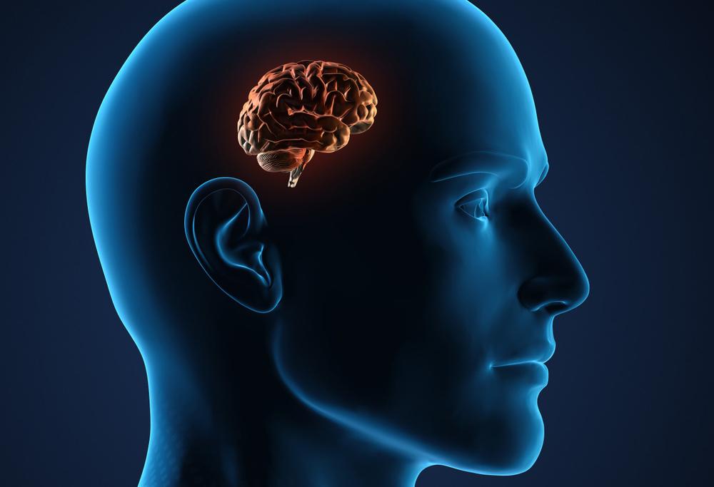 Forex's brain, yesterday...