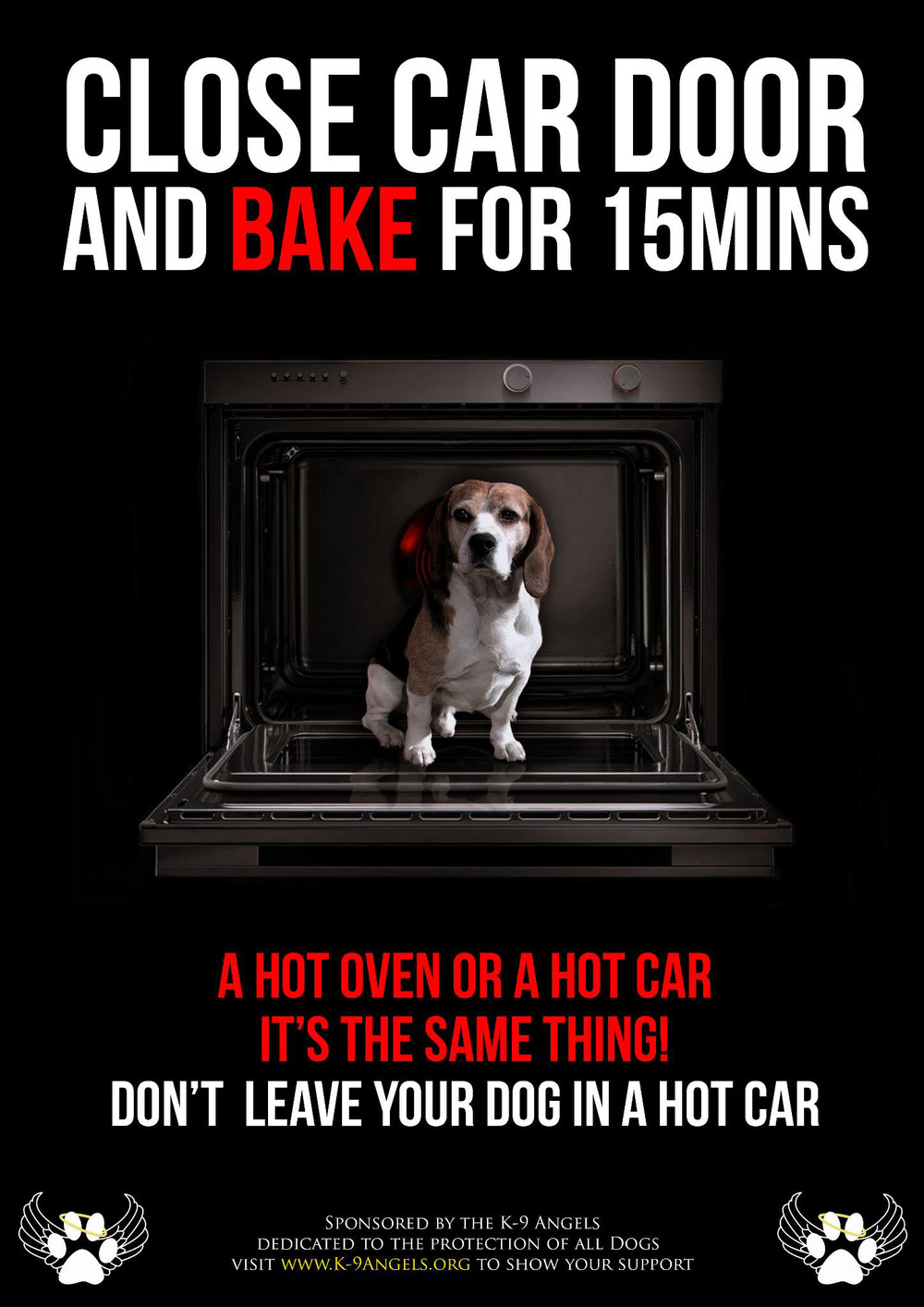 summer safety warning dogs die in hot cars