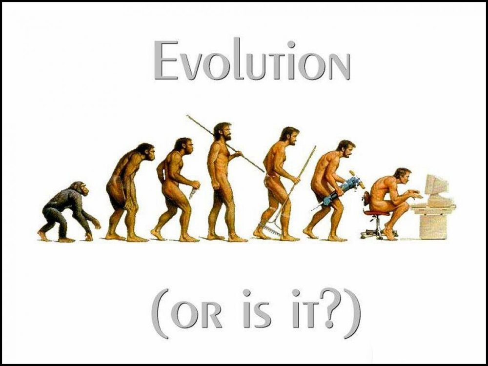 Human evolution: a few steps forward; one step back?