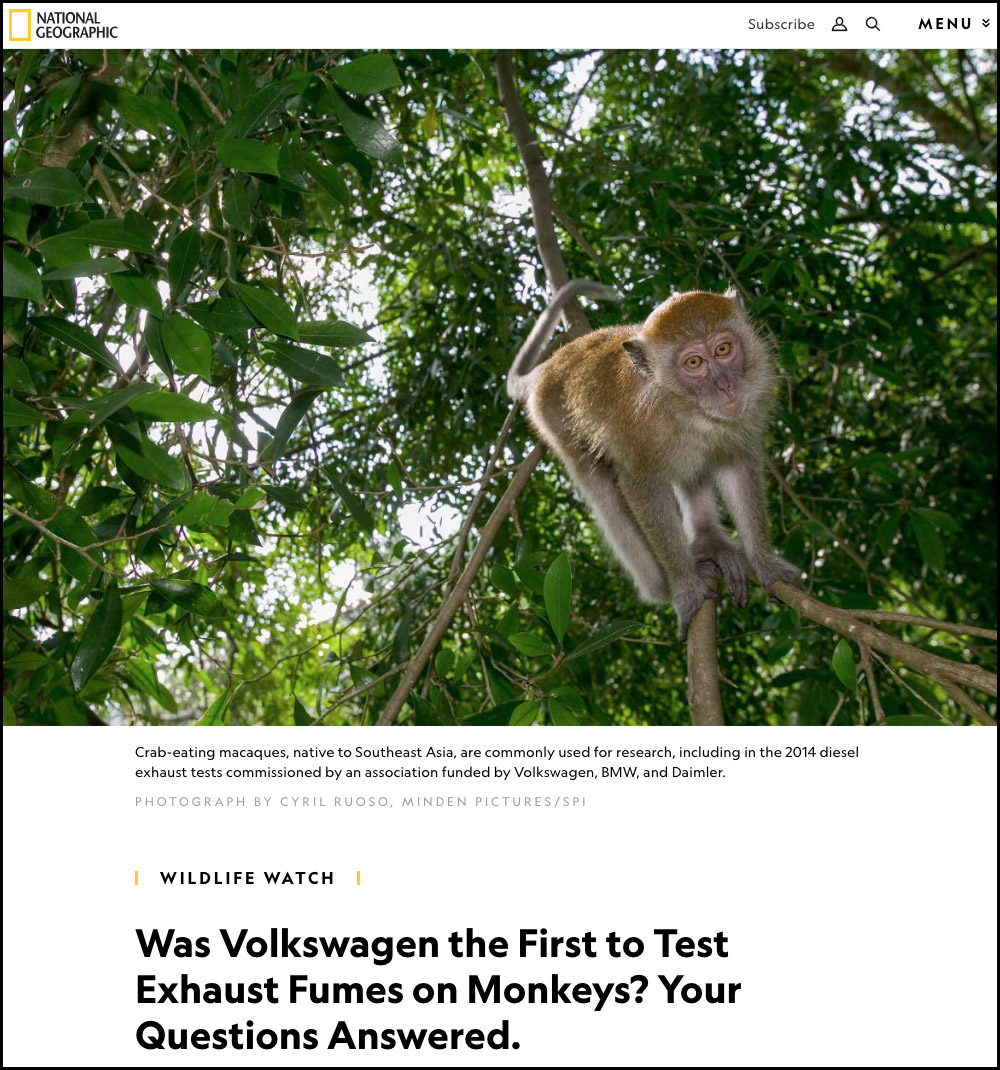 A volkswagen monkeygate.jpg