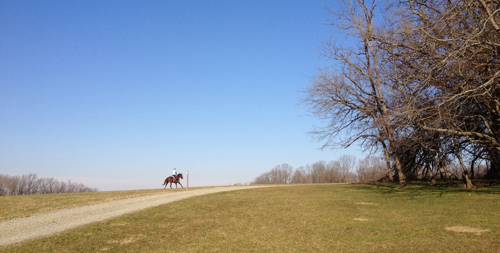 January can't get better than this - a perfect afternoon in Fair Hill