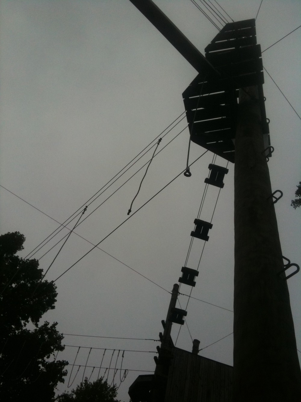 Along the Urban Trail