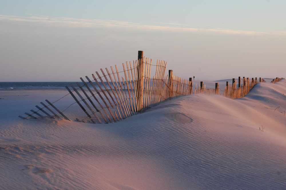 On Delmarva: Afternoon glow on Assateague