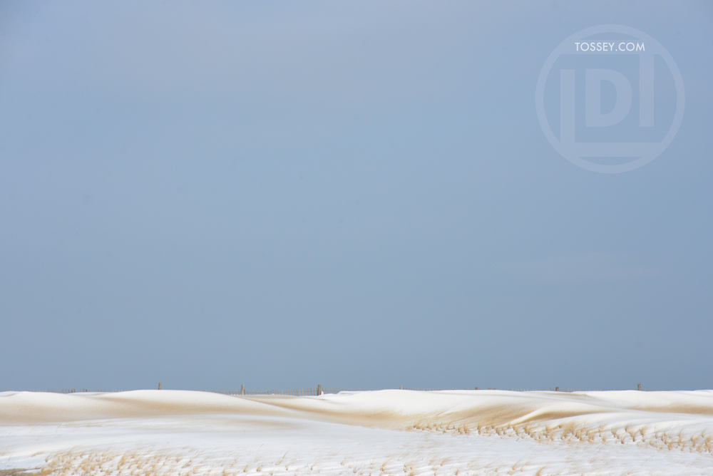 Snowswept dunes in Delaware Seashore State Park this winter