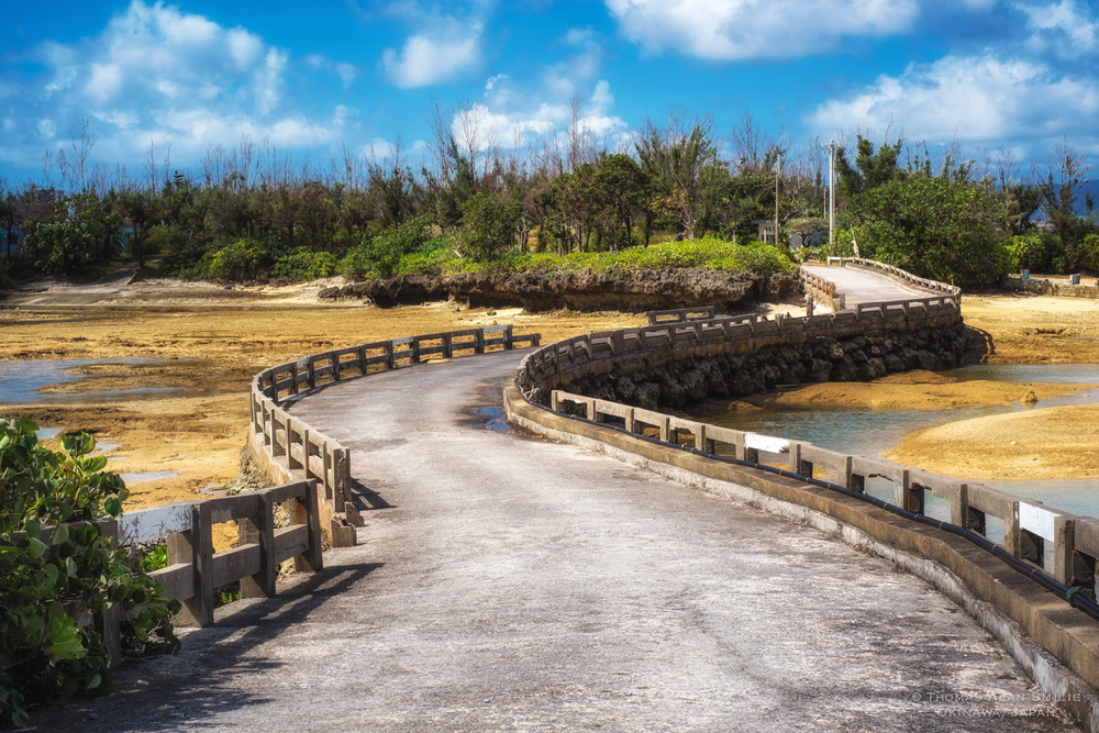 The Winding Road - Okinawa, Japan.