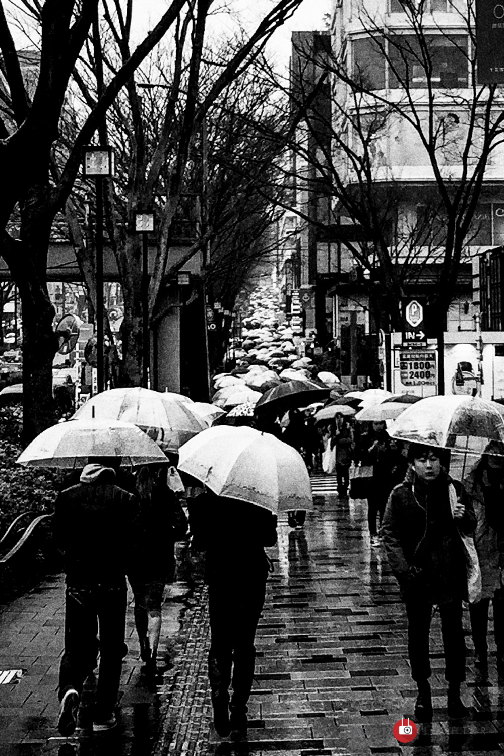 Omotesando, Tokyo. iPhone 6 Plus ISO32, f/2.2, 1/40 sec. Edited in Lightroom and Silver Efex Pro 2.
