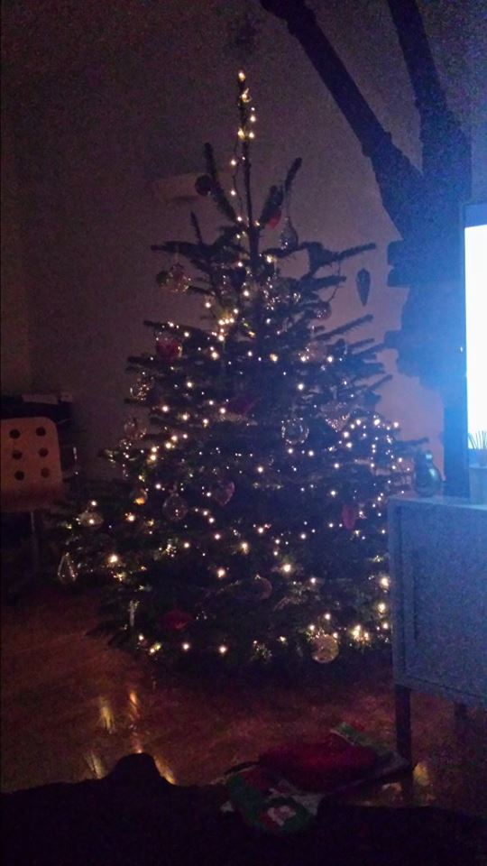 tracey tree pic.jpg