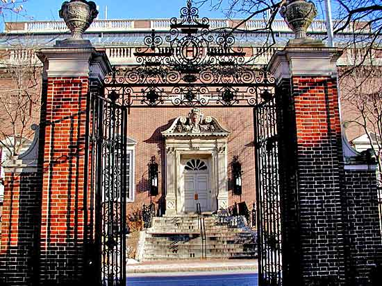 Harvard-University-Art-Museums.jpg