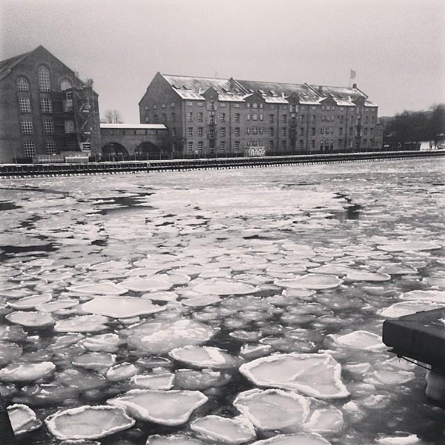 It's thawing a little but the #docks are still pretty #icy - #copenhagen