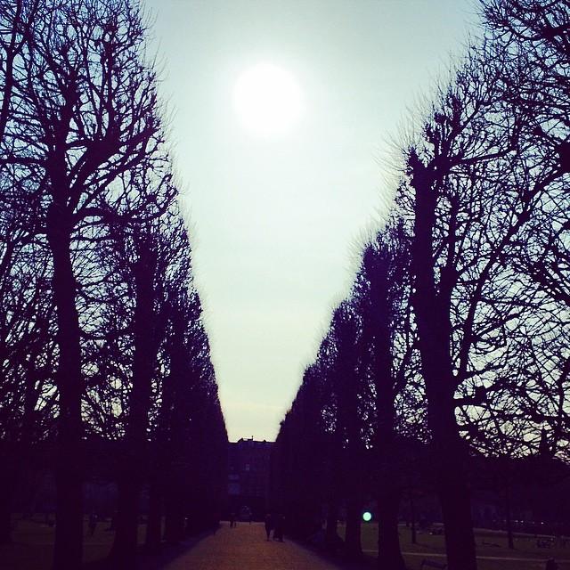 #kongenshave #copenhagen #sun #promenade