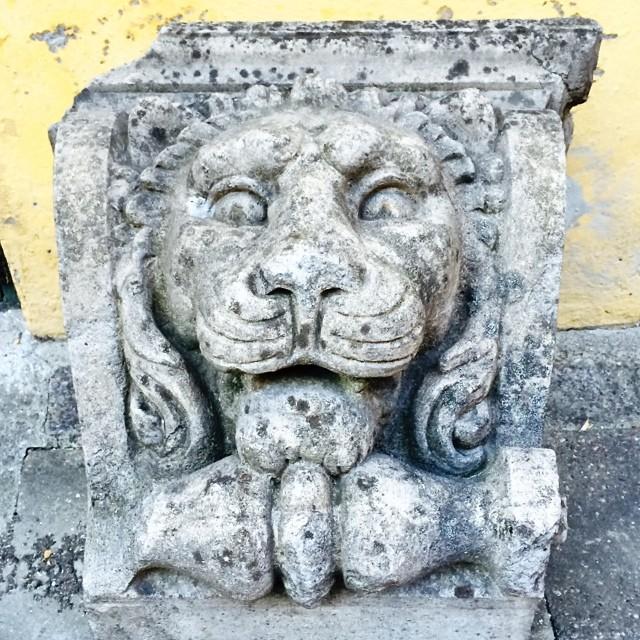 #lion #masonary #sculpture #copenhagen @blissful_lions