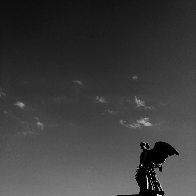 #angel #sculpture #copenhagen #blackandwhite