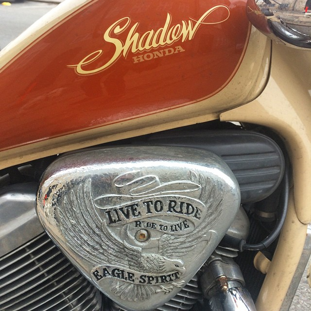 Closeup on the detailing #honda #motorbike #typography @hunty