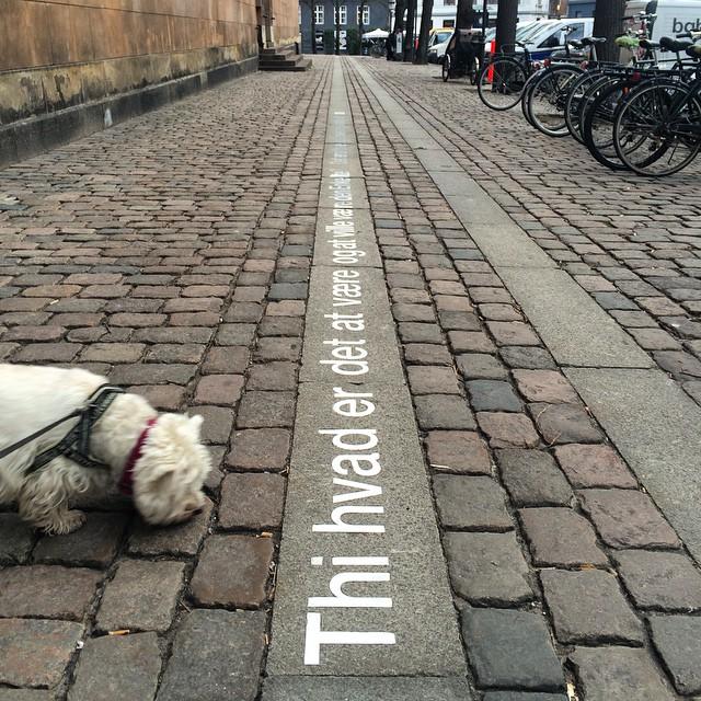 I love coming across these large metal #Kierkegaard #quotes on the street in #copenhagen - #helvetica at its finest - #typography #design #art #publicart