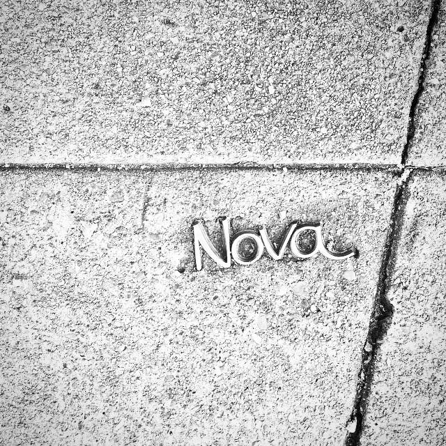 #streettype #type #typography #sign #pavements