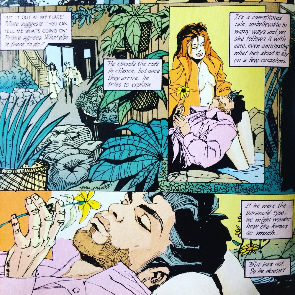 prince_comic_2609.JPG