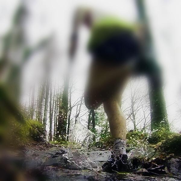 Arfon running in Coed y Brenin