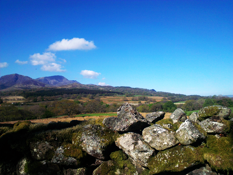 Mynydd Moel from Coed y Foel near Brithdir