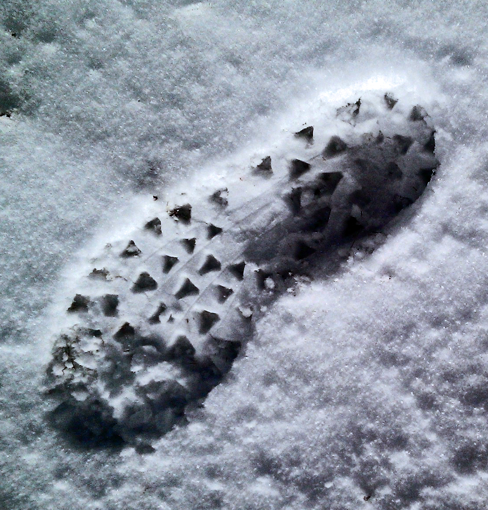 Fell shoe print in the snow