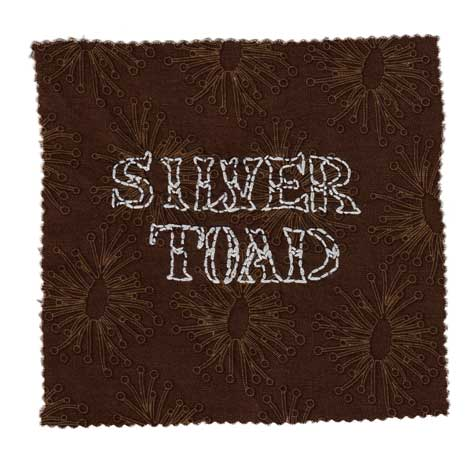 SILVER TOAD   Human senses are an untapped wonder.