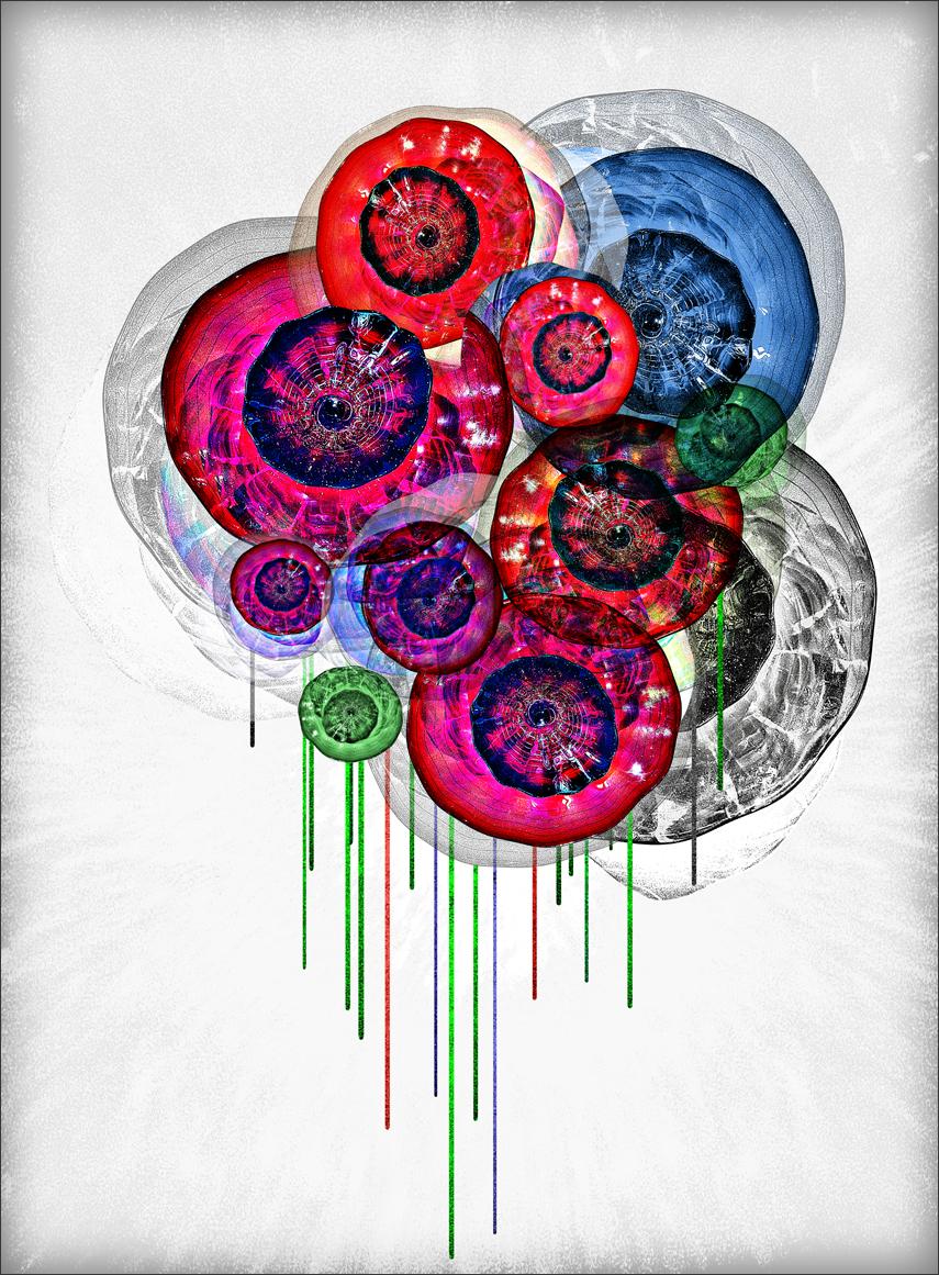 glass-poppies-gallery.jpg