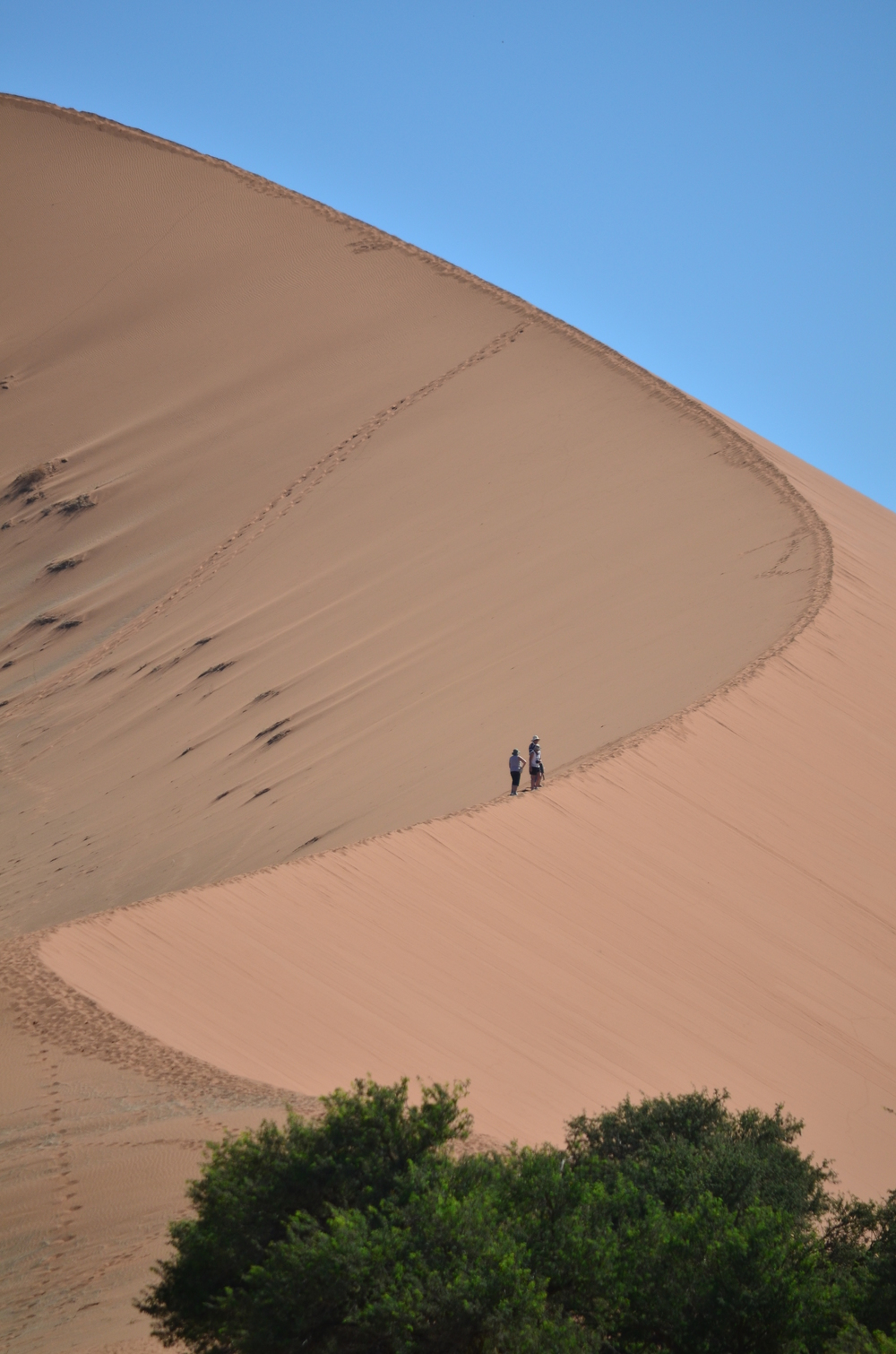Sandy Curve