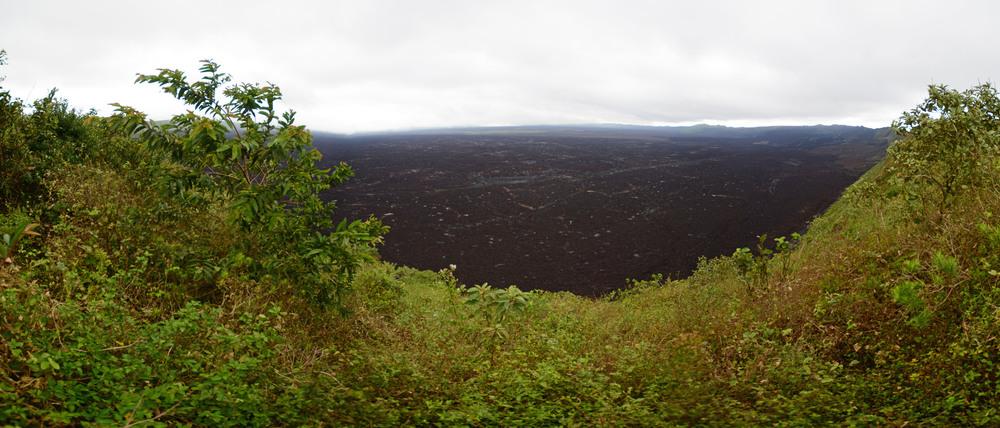 Sierra Negra Pan2low.jpg