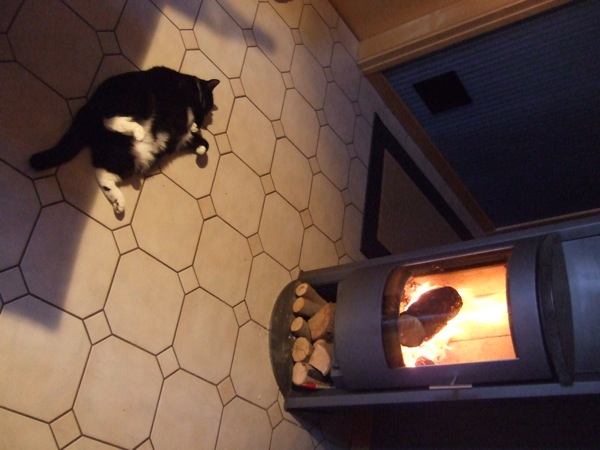 1. A wood fire oven 2. Plenty of body fat Perfected as seen below by my little fat cat friend, Sophia.