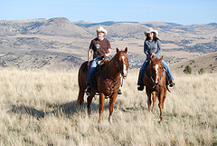 A few weeks ago, Jen and I spent a weekend on a ranch. She had asked me to teach her how to ride horses, brand calves and hunt mountain lions. We did ride horses. More pictures upon clicking on the picture.