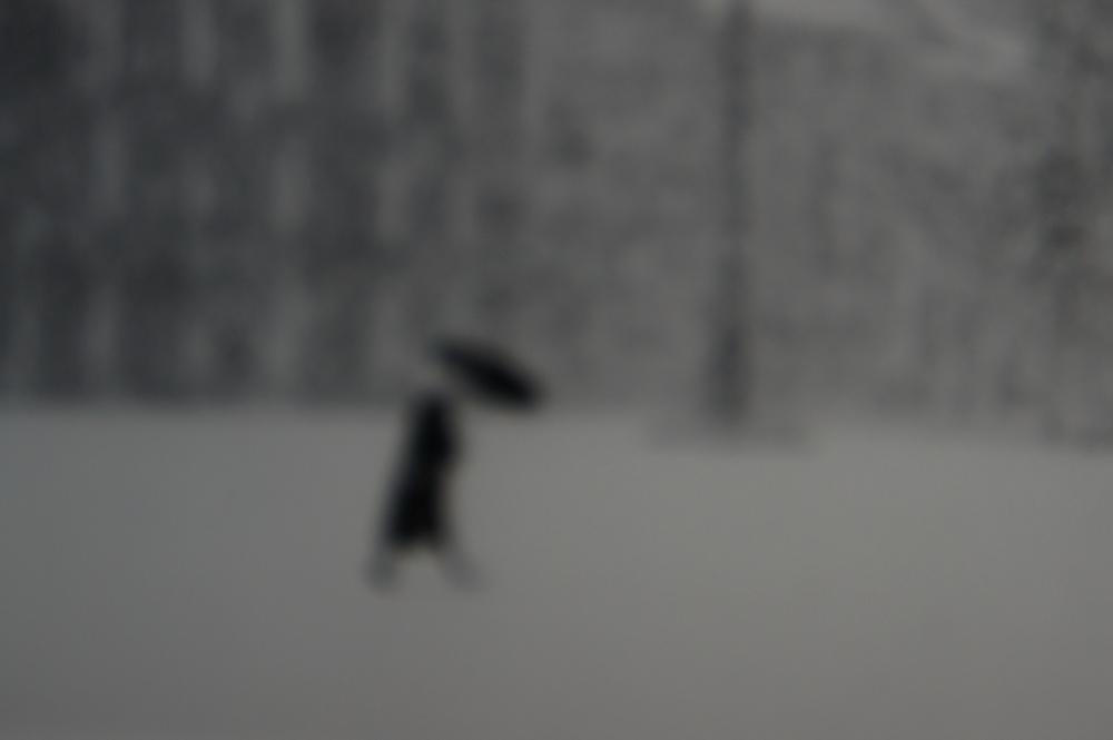 Venice, Winter.jpg