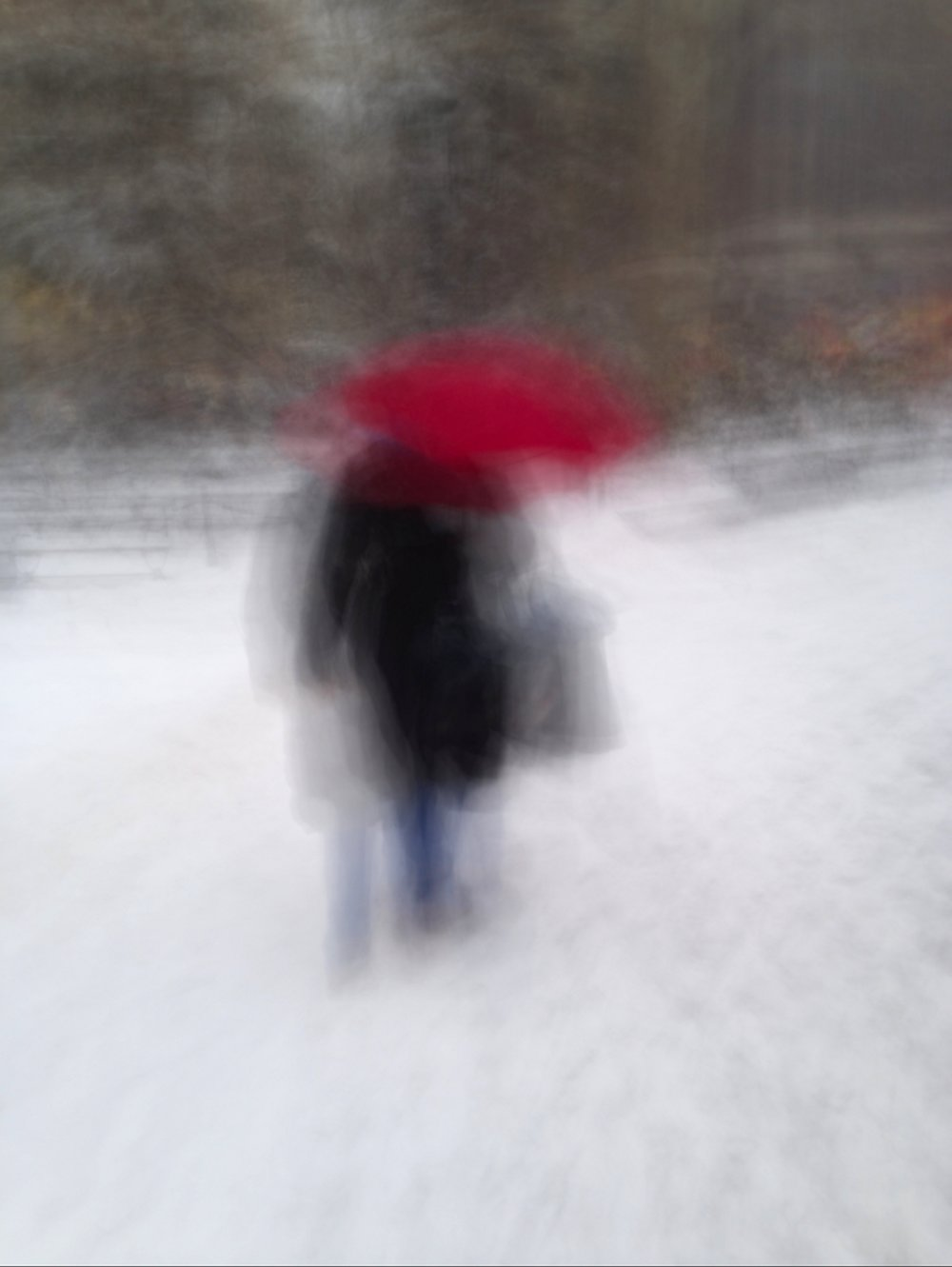 Blur:Snow 2.JPG