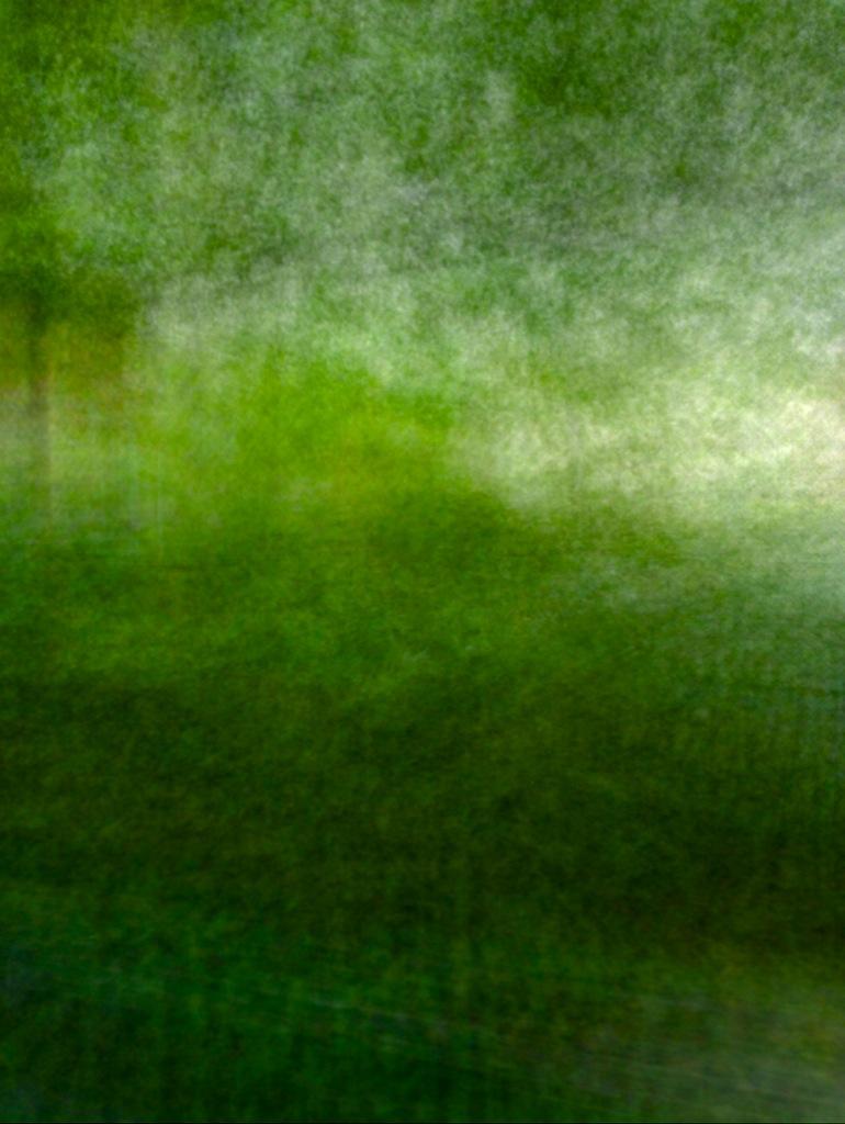 Blur:Trees 2.jpg