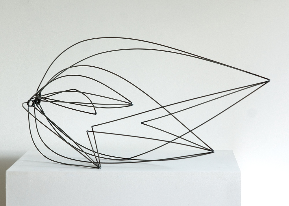 "Line Drawing 8  , 2014    Steel,30"" x 15"" x 17"""