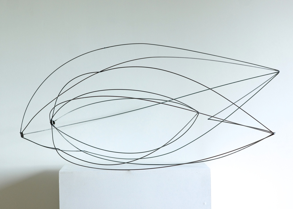 Line Drawing Pictures : Line drawing series u isabel mattia