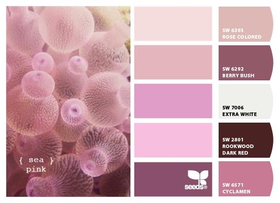 sea pink palette