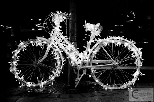 Holiday Hop 2010 LIGHTS (1 of 2).jpg