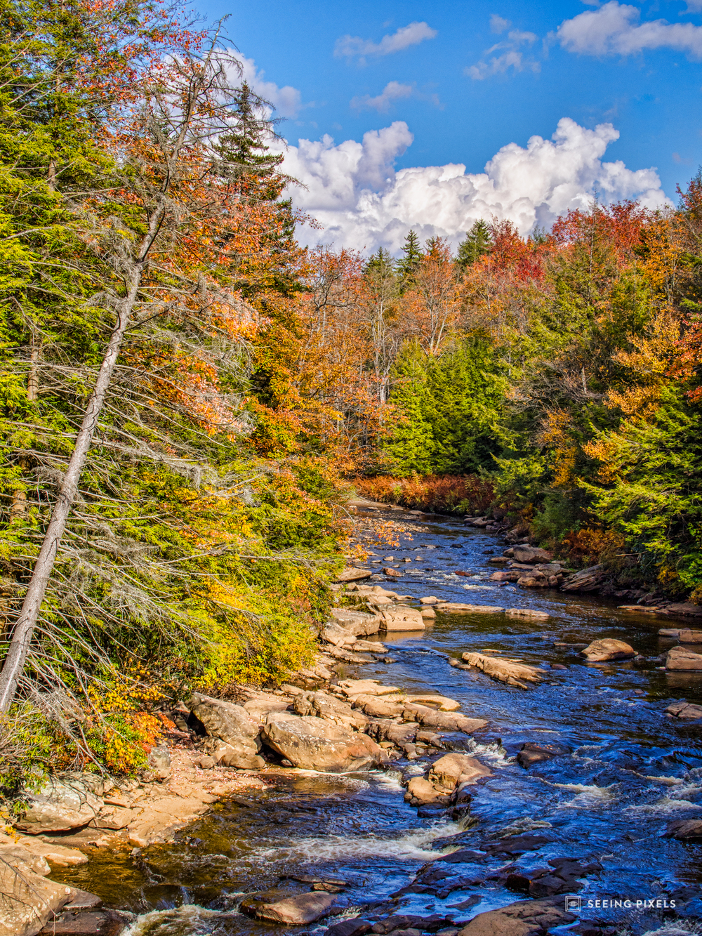 The Blackwater river flows continuously amongst the rocks and trees